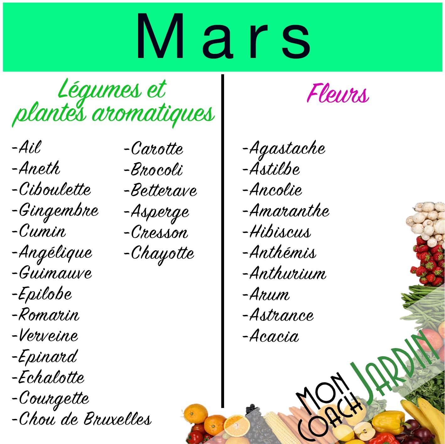Légumes à planter en mars