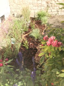 Coaching jardinage Benoit 1