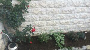 Coaching jardinage Gaby 3