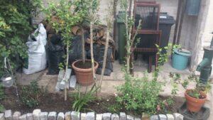 Coaching jardinage Gaby 1